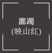 躑躅(つつじ)