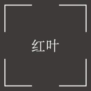 紅葉(もみじ)